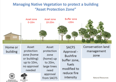 Managing Native Vegetation to protect a building 'Asset Protection Zone'